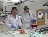 Obst wird im Labor untersucht