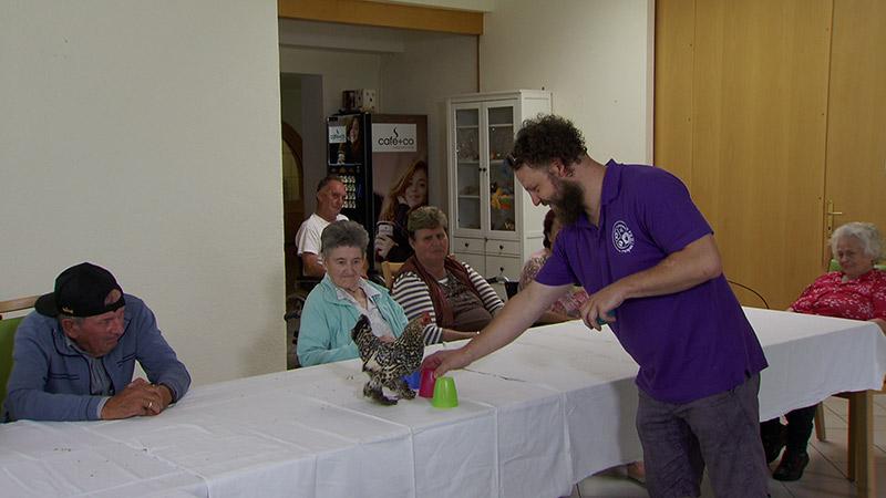 Therapiehühner Huhn Altersheim Demenz Pflegeheim