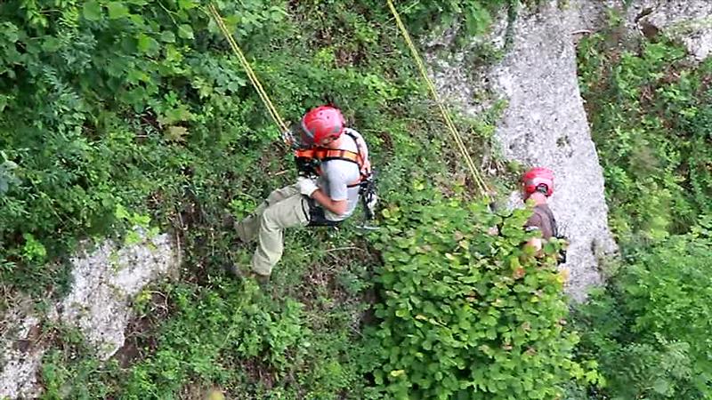 Bergputzer auf Mönchsbergwand