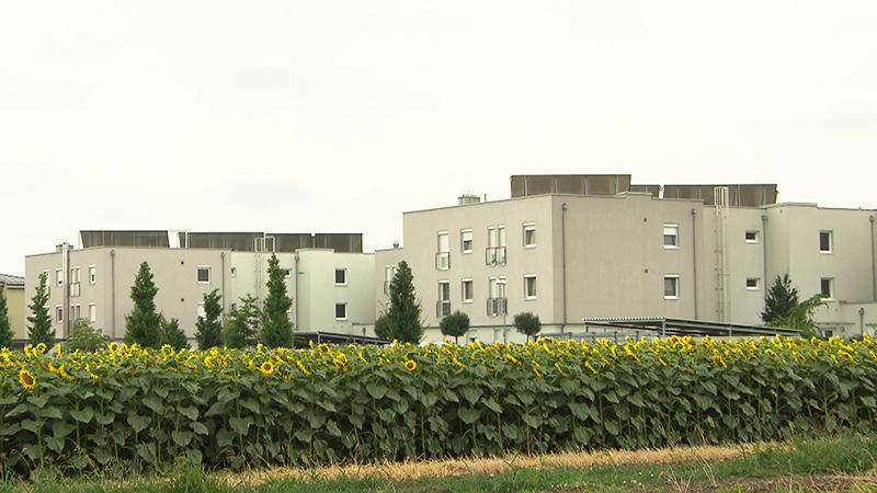 Haus der Energiezukunft in Eisenstadt
