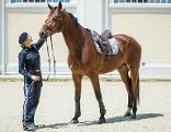 Polizistin mit Polizeipferd Dorian