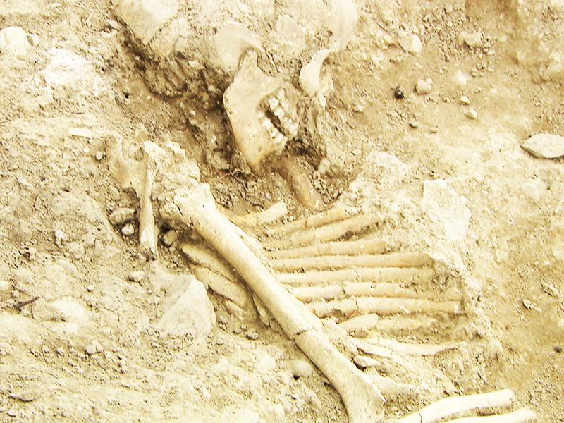 Mittelalterlicher Gräberfund Sulz