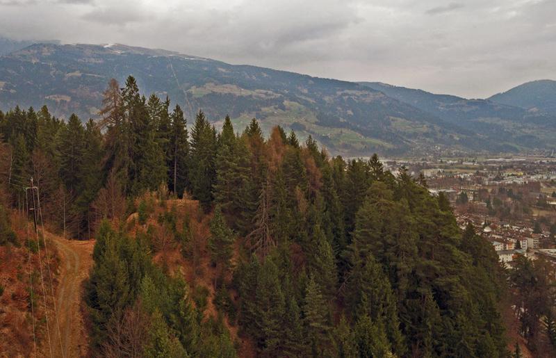 Bewaldeter Hügel am Rand von Lienz