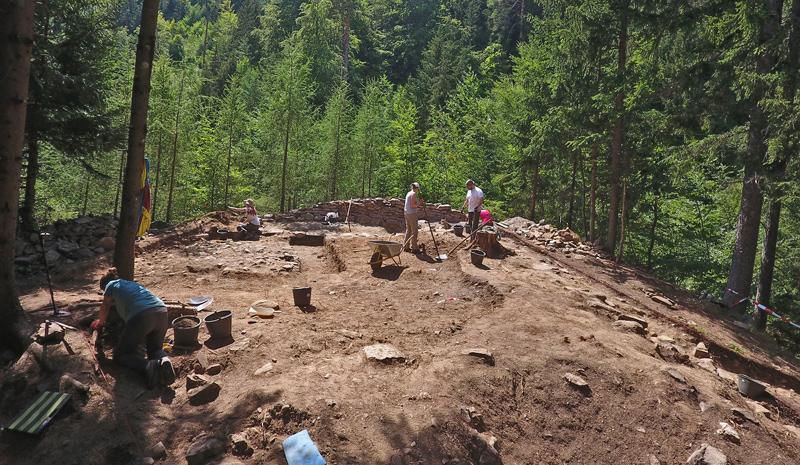 Archäologische Grabung im Wald