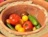 Gemüse wird in Tontöpfen gekühlt
