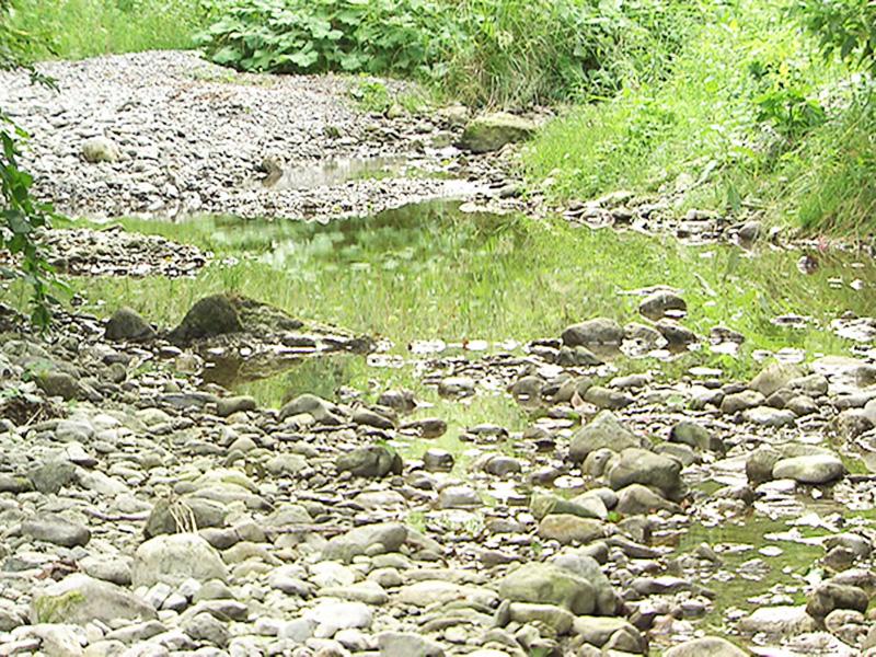 Niedrige Wasserstände