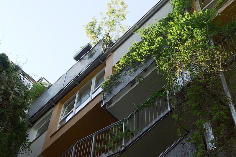 Häuserfassade Pflanzen