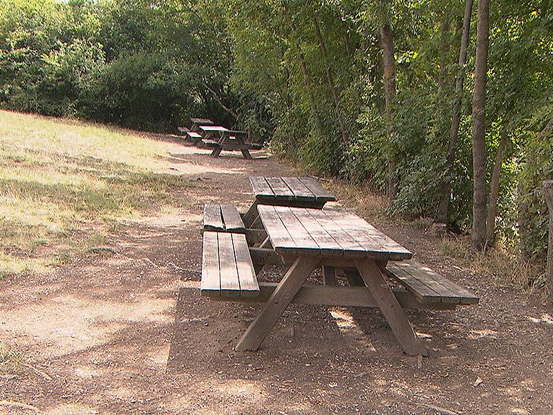 Leere Tische bei Grillplatz im Krapfenwald