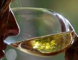Wein Verkostung Weinglas