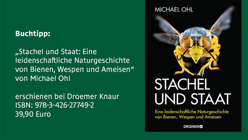 """Das Sachbuch """"Stachel und Staat: Eine  leidenschaftliche Naturgeschichte"""", geschrieben von Michael OHl, widmet sich den  Bienen, Wespen und Ameisen."""