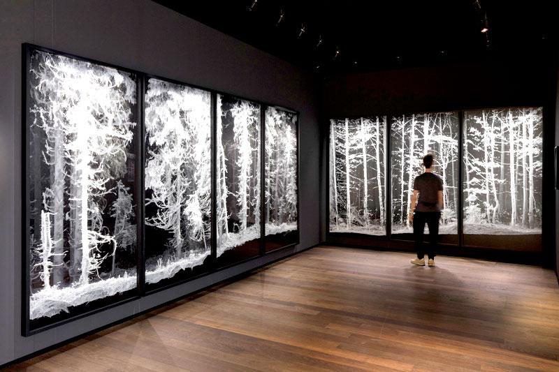 Lotsen durch den Ars-Electronica-Dschungel