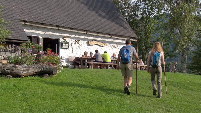 Alm Almwirtschaft Hütte Touristen Wanderer