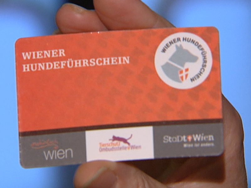 Wiener Hundeführschein