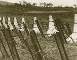 Panzersperren bei Šentilj/St. Egidi als Hindernis gegen die deutsche Wehrmacht
