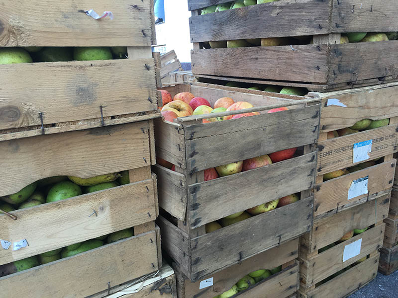 Obst Presse