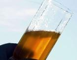 Most oder Cider