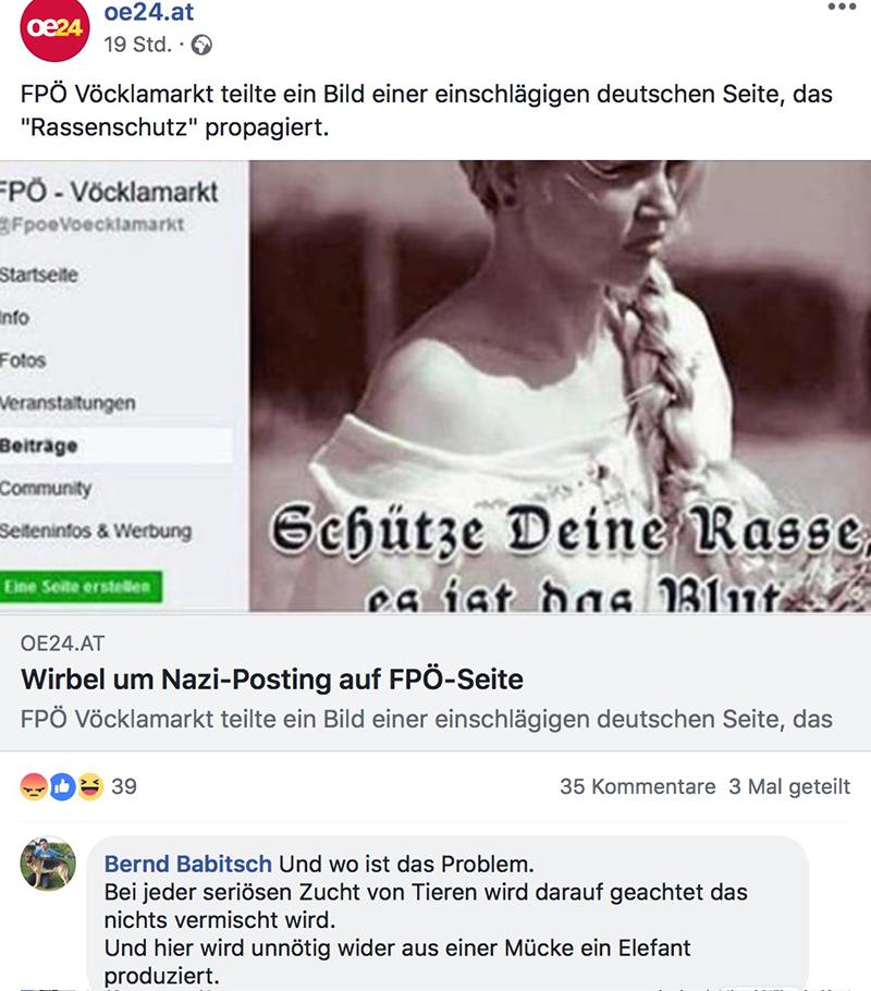 Kommentar Facebook FPÖ Rassenposting