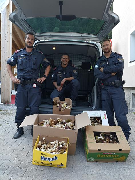 Pilze Polizei