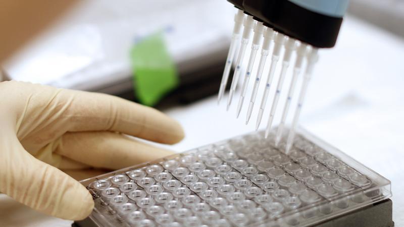 Forscher bringen Krebszellen zum Leuchten