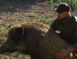 Andi Schmidt und sein Wildschwein Toni