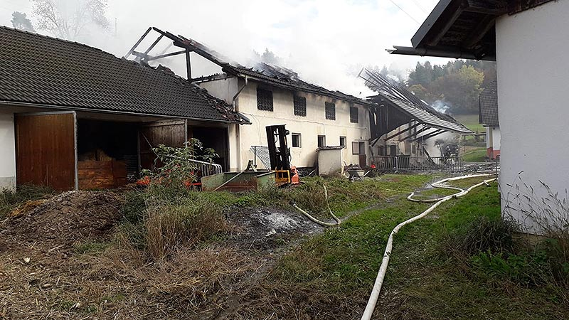 Brand Ebenthal Ferkel gerettet