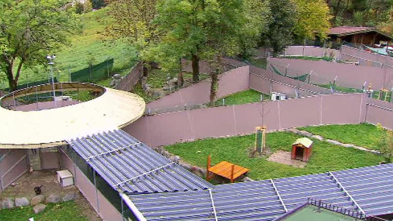 Schöner Wohnen Im Tierheim Mentlberg Tirolorfat