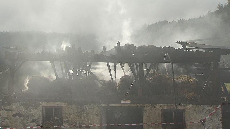 Brand Metnitztal Rinder gerettet