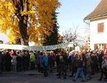 Demo in Hohenems