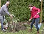 umpflanzen herbst