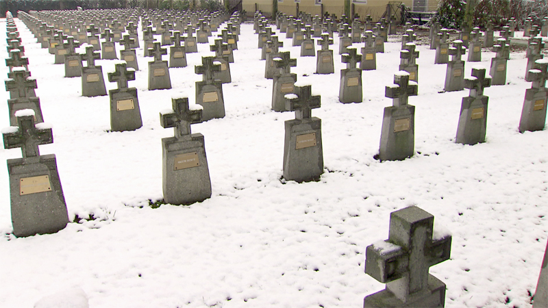 Soldatenfriedhof Kriegskräber