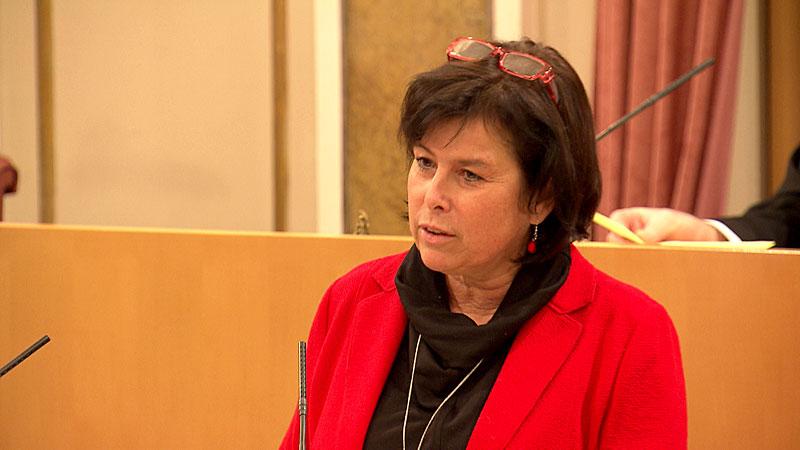 Birgit Gerstorfer im Landtag