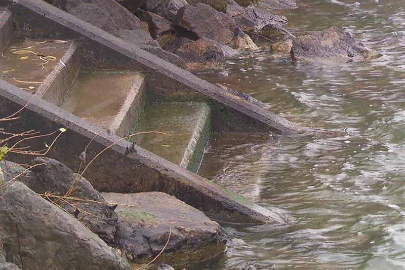 Niederwasser