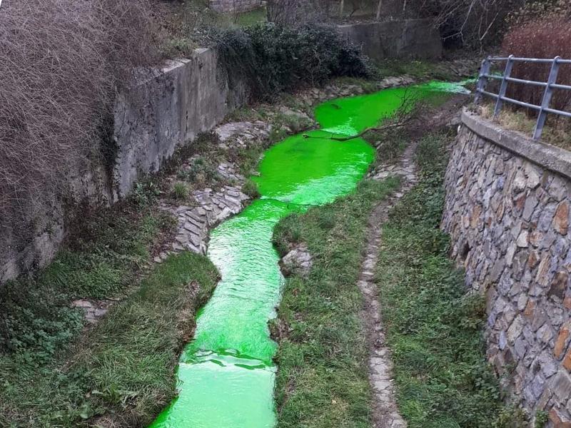 Grüner Fluss in Klosterneuburg