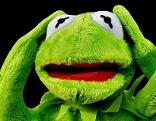 Frosch hält sich Ohren zu