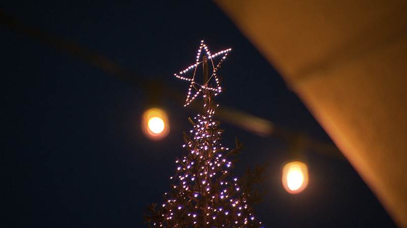 SSC Cividale Christbaum