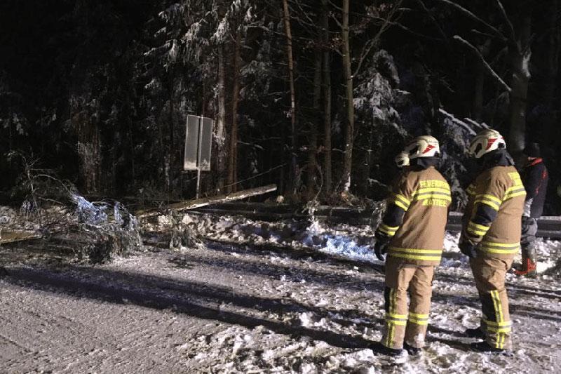 Feuerwehrleute in der Nacht mit Schnee und umgestürztem Baum