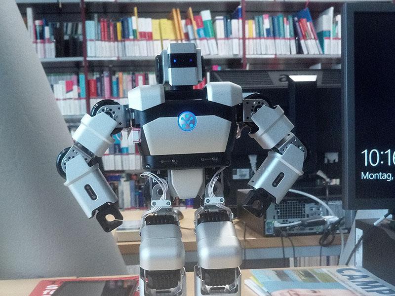 Roboter Yanshe