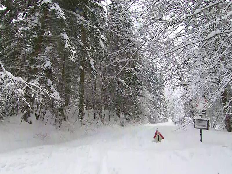Schneesituation Hohenberg