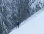Skitour Skitourengeher Ski Neuschnee Pulver