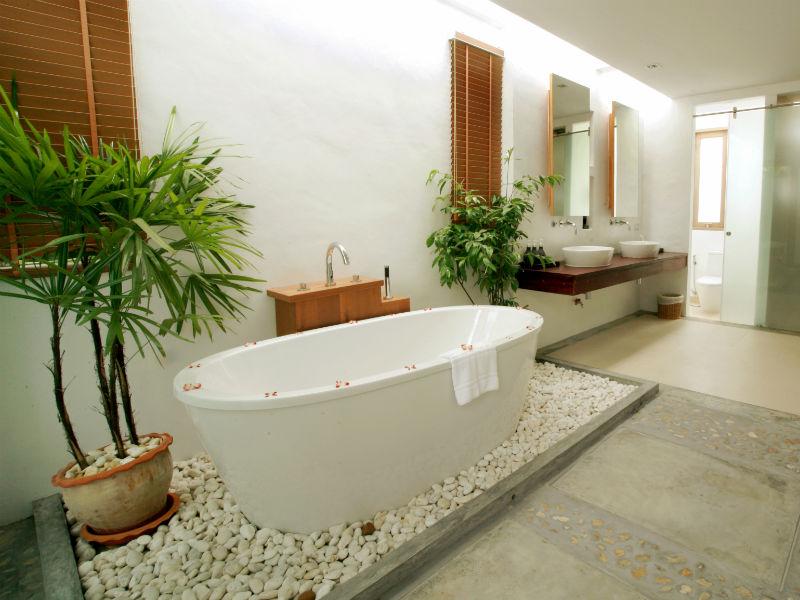 pflanzen f r das badezimmer radio wien. Black Bedroom Furniture Sets. Home Design Ideas