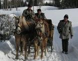 Pferdeschlittenfahrt im Lungau