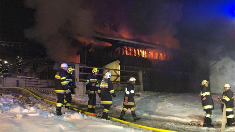 Brand Stall Greifenburg Dellach Rinder gerettet