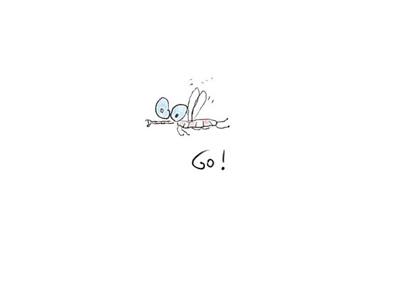 """Logo """"Go Bugs Go"""""""