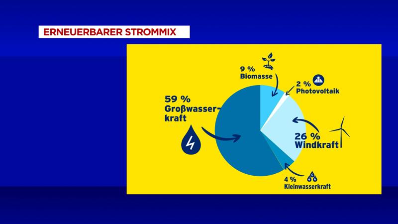 Biomasse Ökostromnovelle Bundesrat Existenz