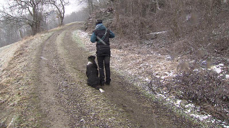 12.02.19 Landesjagdverband Leinenpflicht Hunderriß