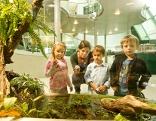 Kinder vor einem Terrarium