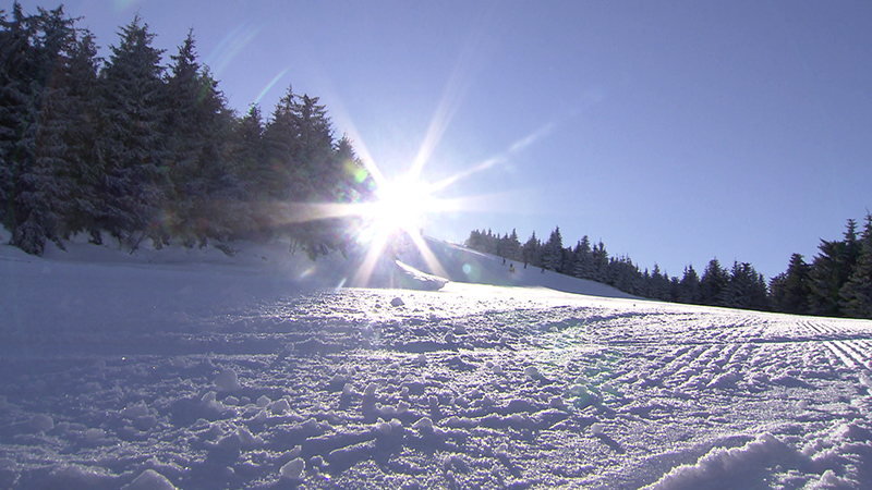 11.02.19 Semesterferien Bilanz Skifahren Nächtigungen