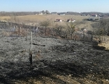Waldbrand bei Mogersdorf verhindert