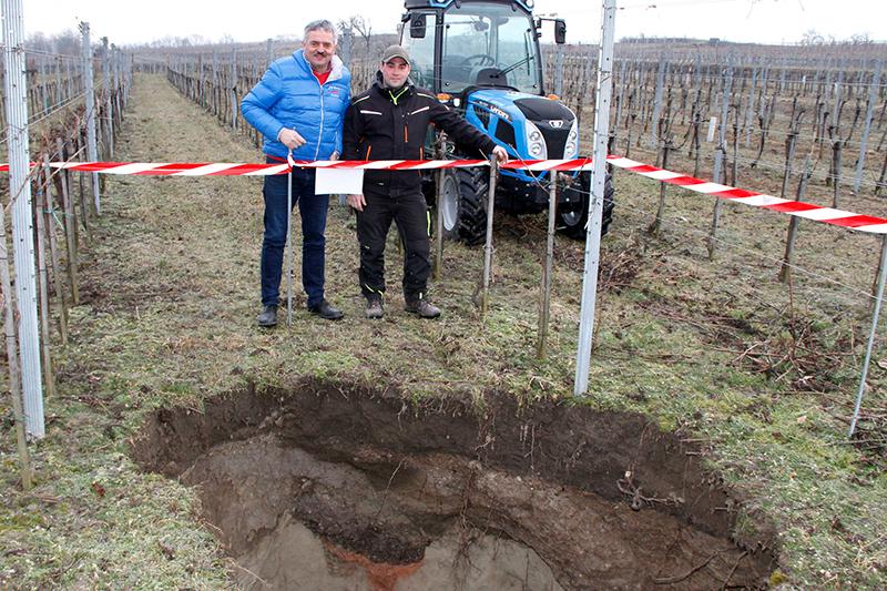 Weingarten Loch Brunnkirchen