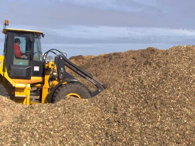 Bei einem Biomasseheizwerk wird als Brennstoff Biomasse eingesetzt - hier Holzschnitzel.